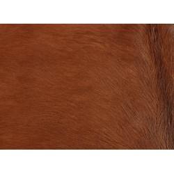 Cow hide rug brownCow hide rug brown