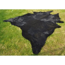 Black cow hide